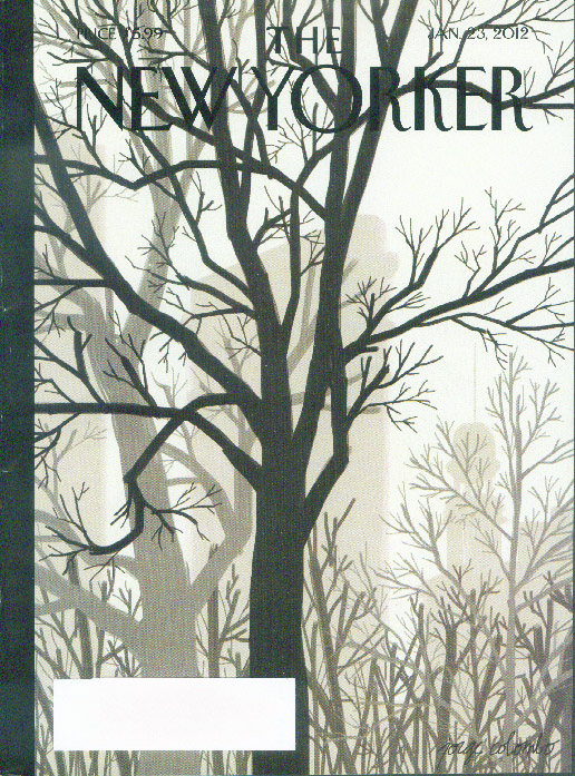 New Yorker cover Colombo naked park trees against Flat Iron Building 1/23 2012