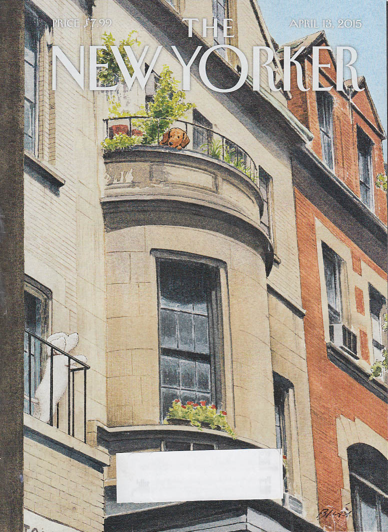 New Yorker cover Bliss 4/13 2015 Dogs eye each other from adjoining brownstones
