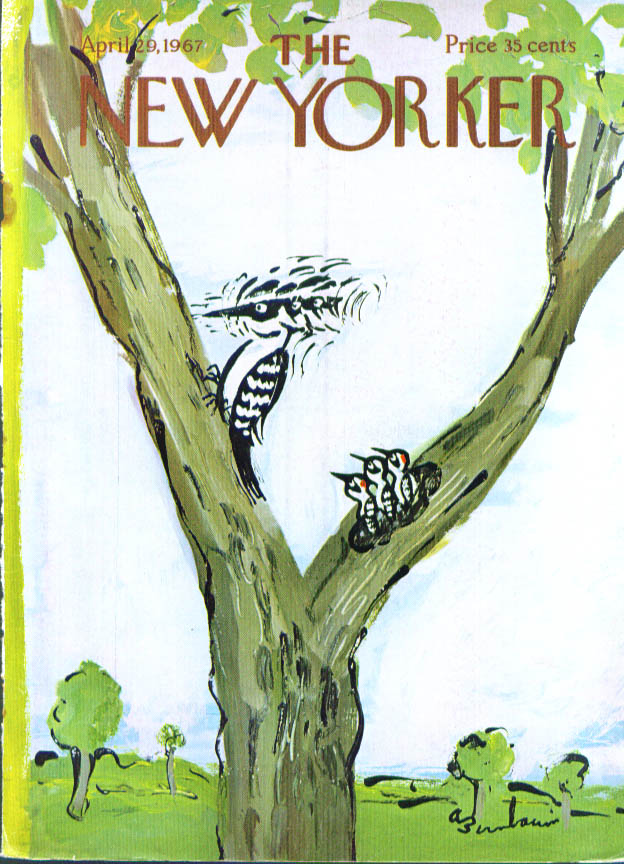 New Yorker cover Birnbaum woodpecker mom demo for kids 4/29 1967