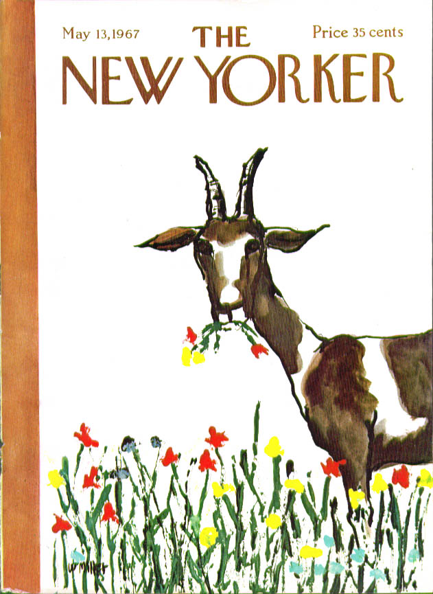Image for New Yorker cover Miller Billy goat eating colorful flowers 5/13 1967