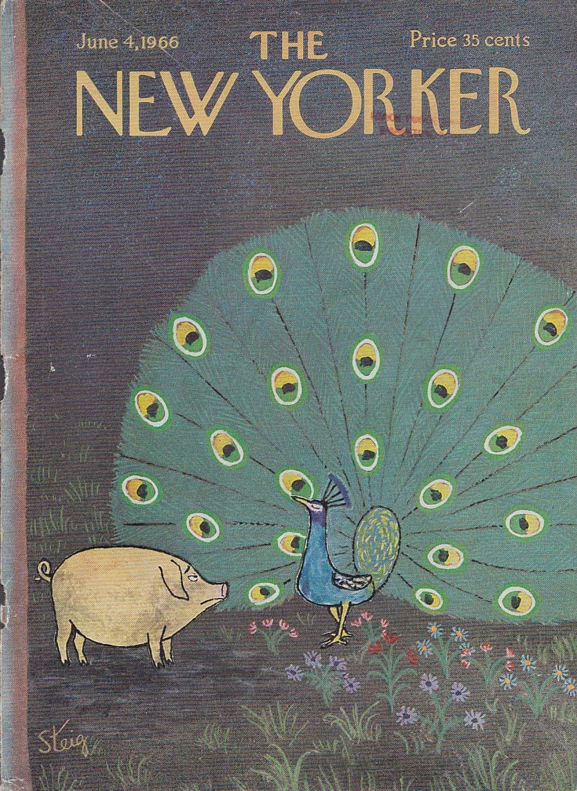 New Yorker cover Steig pig vs peacock 6/4 1966