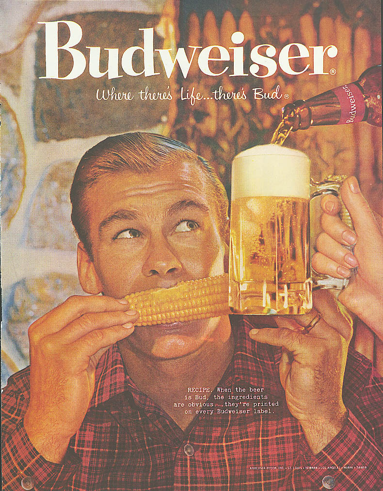 Corn on the cob & mugful of Budweiser beer ad 1960
