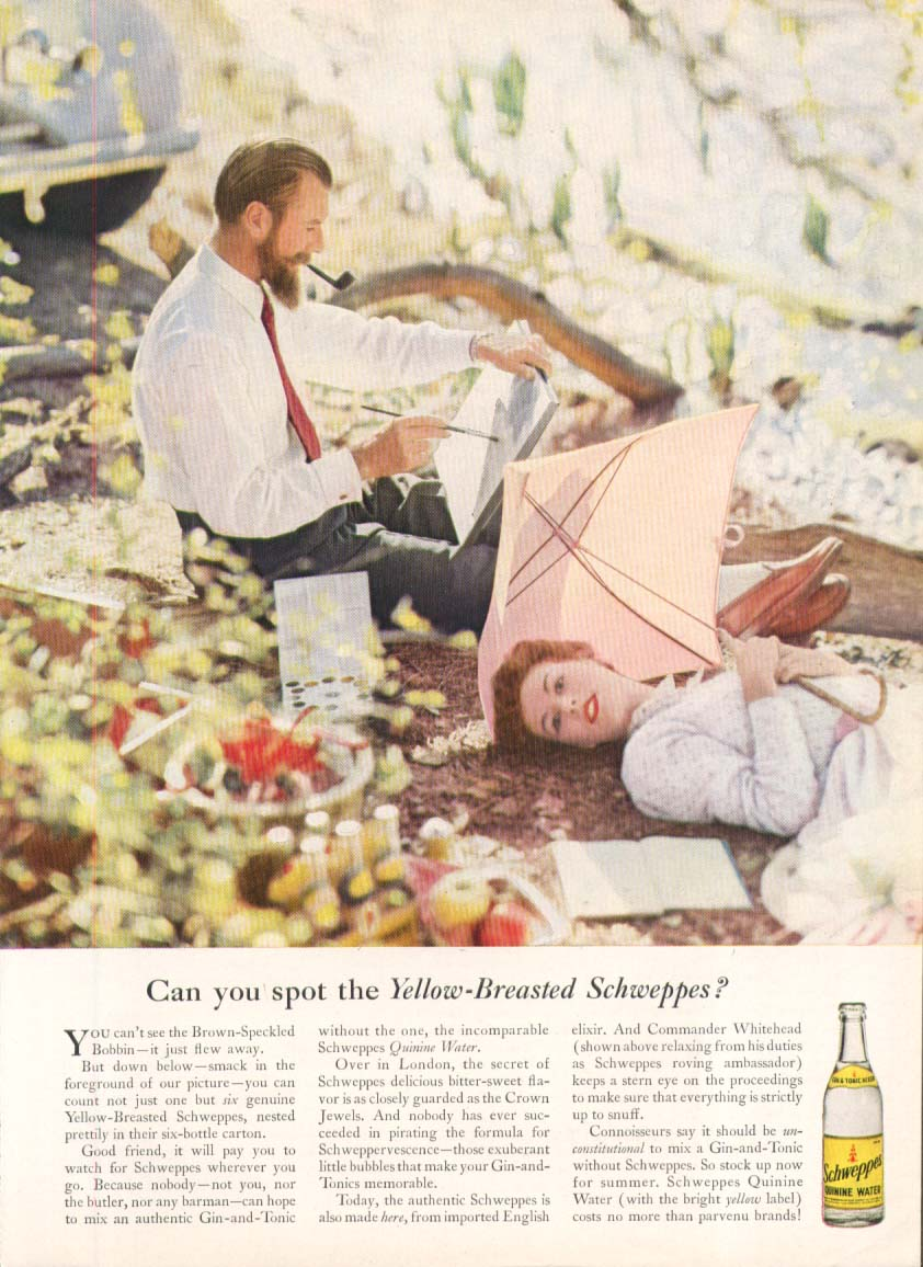 Image for Schweppes Yellow-Breasted Whitehead Gin & Tonic ad 1955