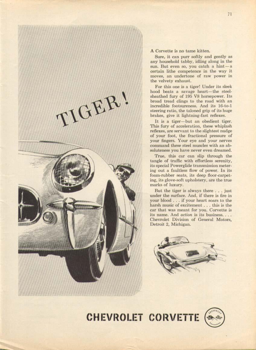 Image for TIGER! No tame kitten . . . Corvette ad 1955