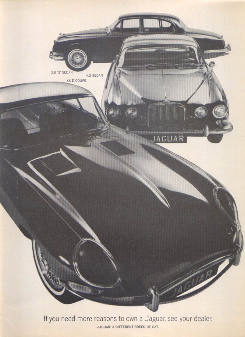 "Image for Jaguar XK-E Coupe, 3.8 ""S"" & 4.2 Sedan ad 1966"