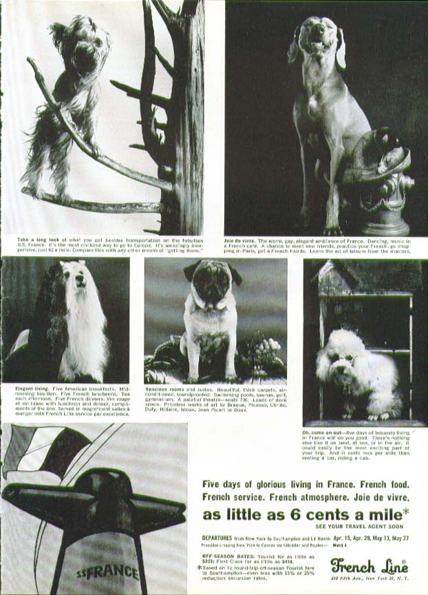 5 days glorious living on S S France French Line ad 1965 dog breed theme