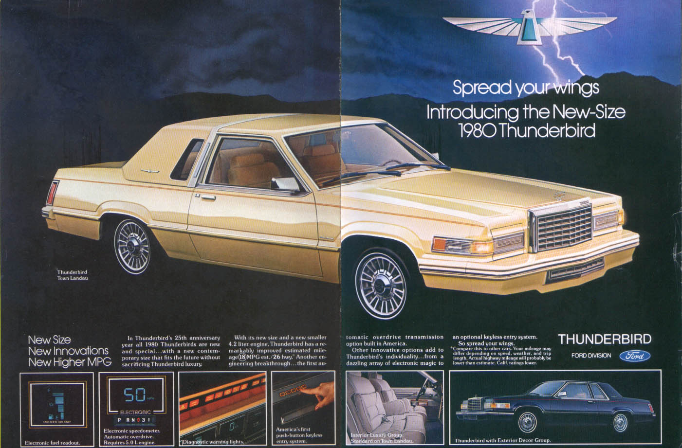 Image for Ford Thunderbird Town Landau Spread your wings ad 1980