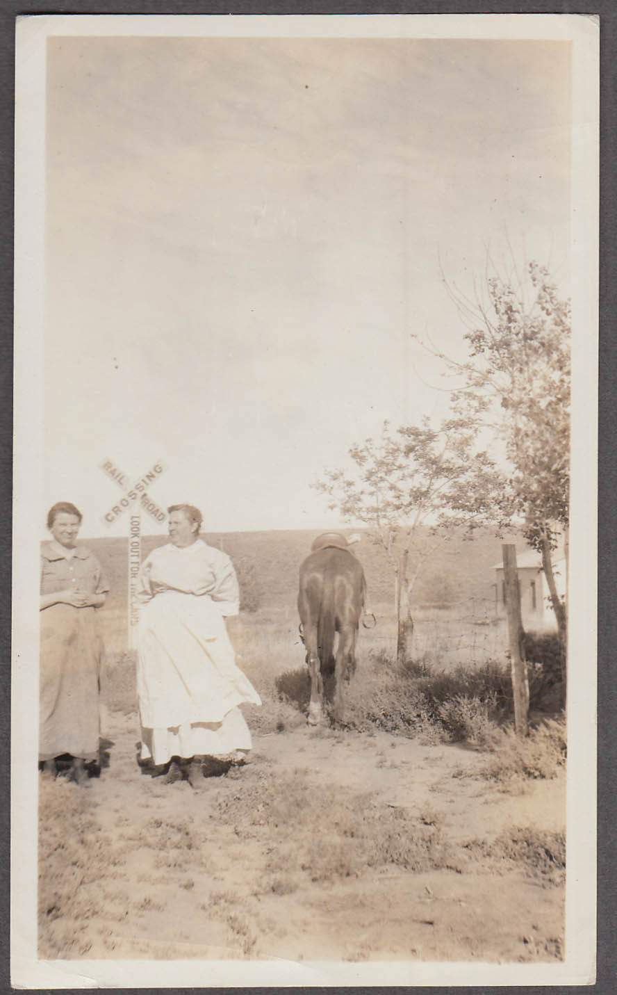 Stout Aunt Mary & mother rural RR Crossing & horse's tail vernacular snapshot