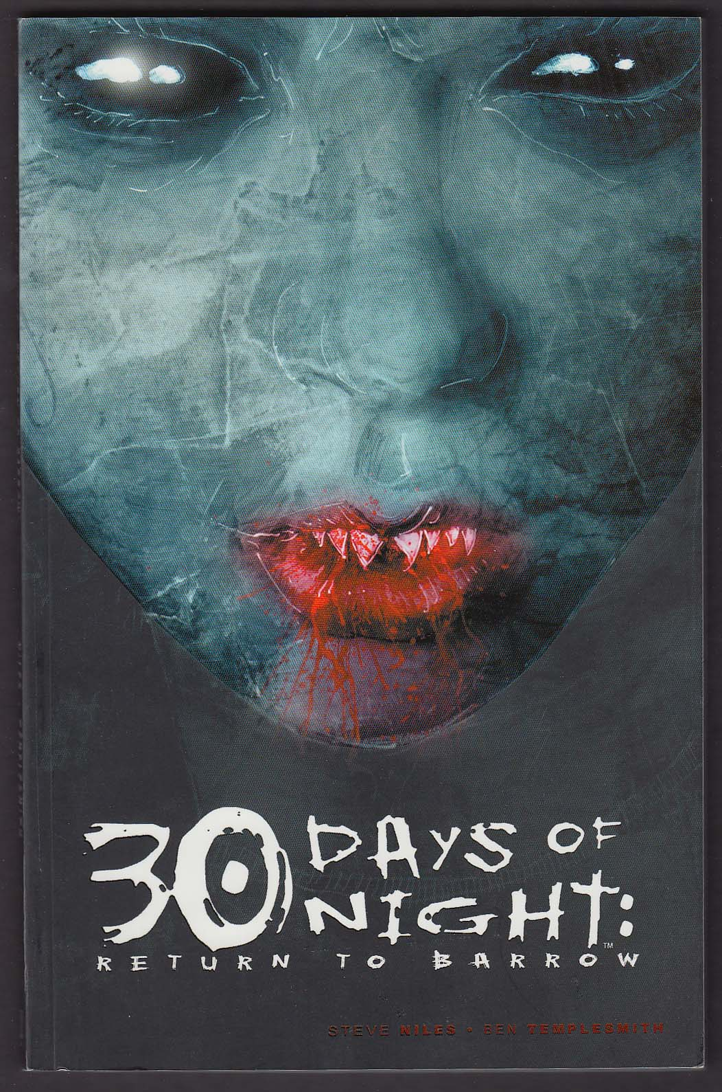 30 Days of Night: Return to Barrow #3 IDW graphic novel comic 2nd printing 2007