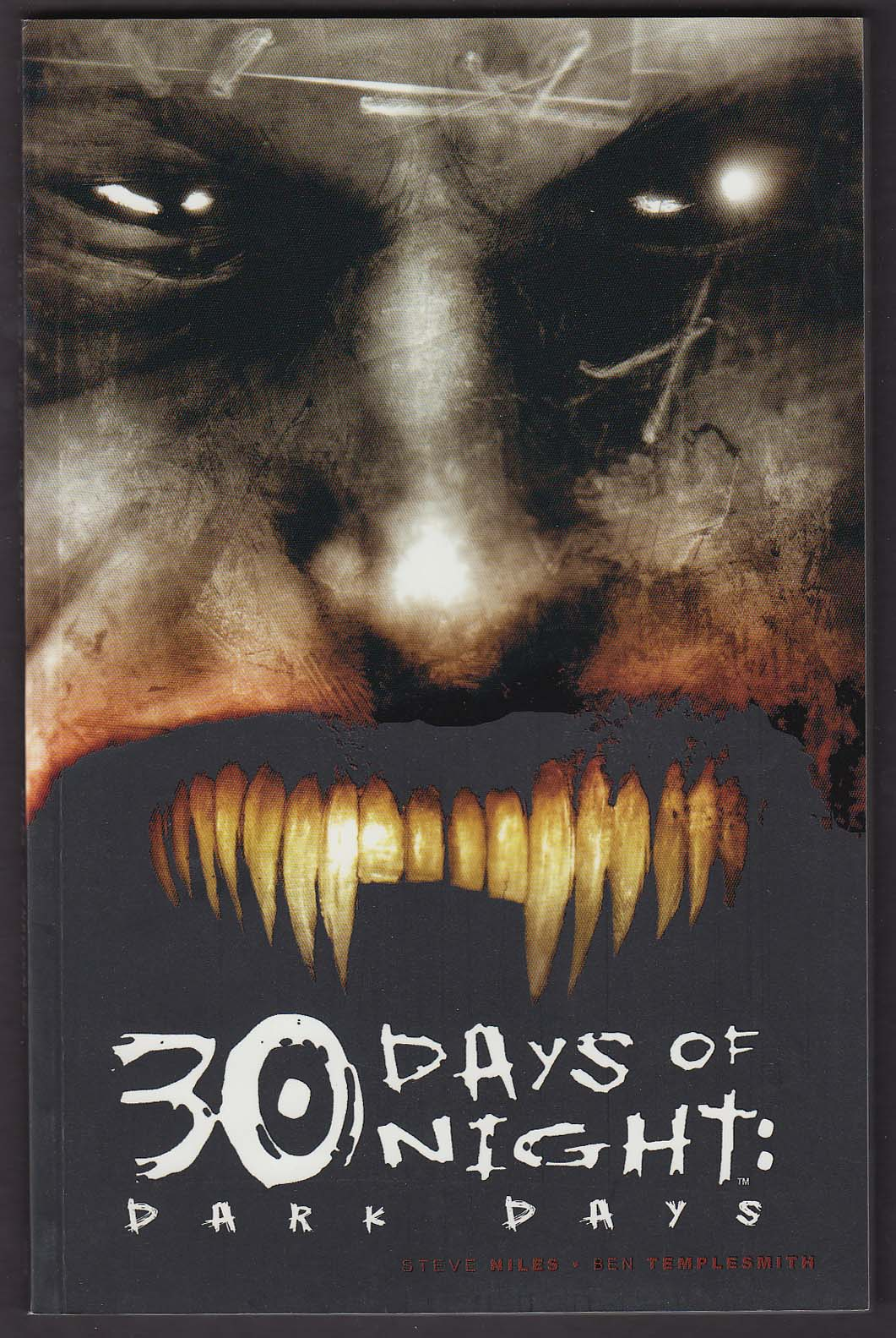 30 Days of Night: Dark Days #2 IDW graphic novel comic book 2nd printing 2007
