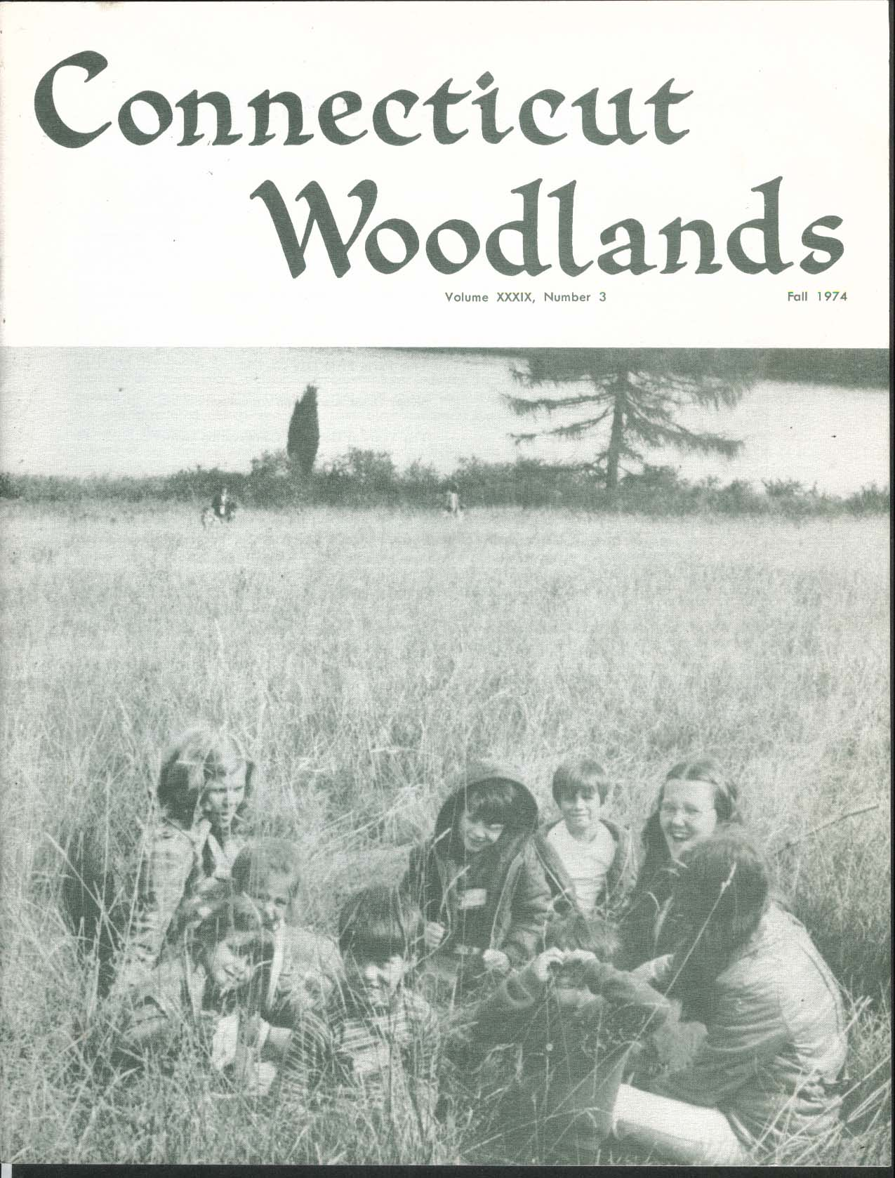 Image for CONNECTICUT WOODLANDS Garrepy State Forester Christmas Tree Growing ++ Fall 1974