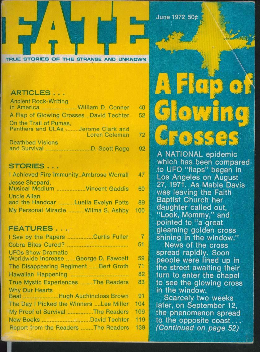 FATE #267 Mable Davis UFO Flap Glowing Cross ULA Ancient Rock-Writing 6 1972