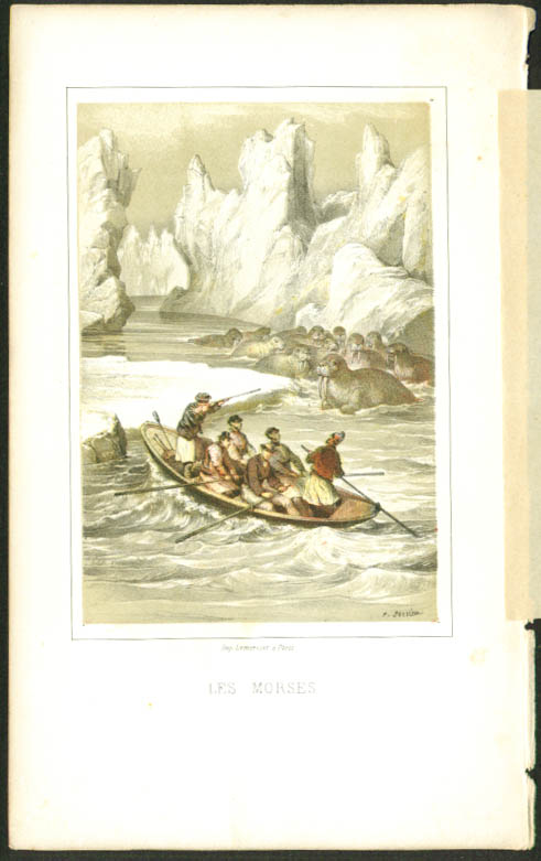 Shooting Walrus 1840s colored engraving Sorrieu