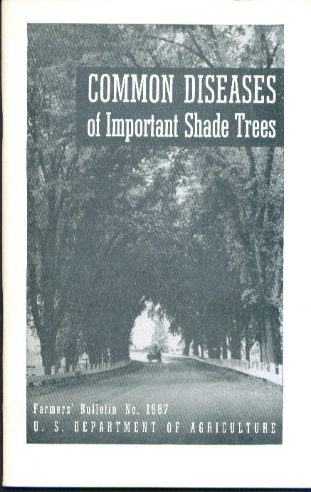 Common Diseases Important Shade Trees USDA 1948