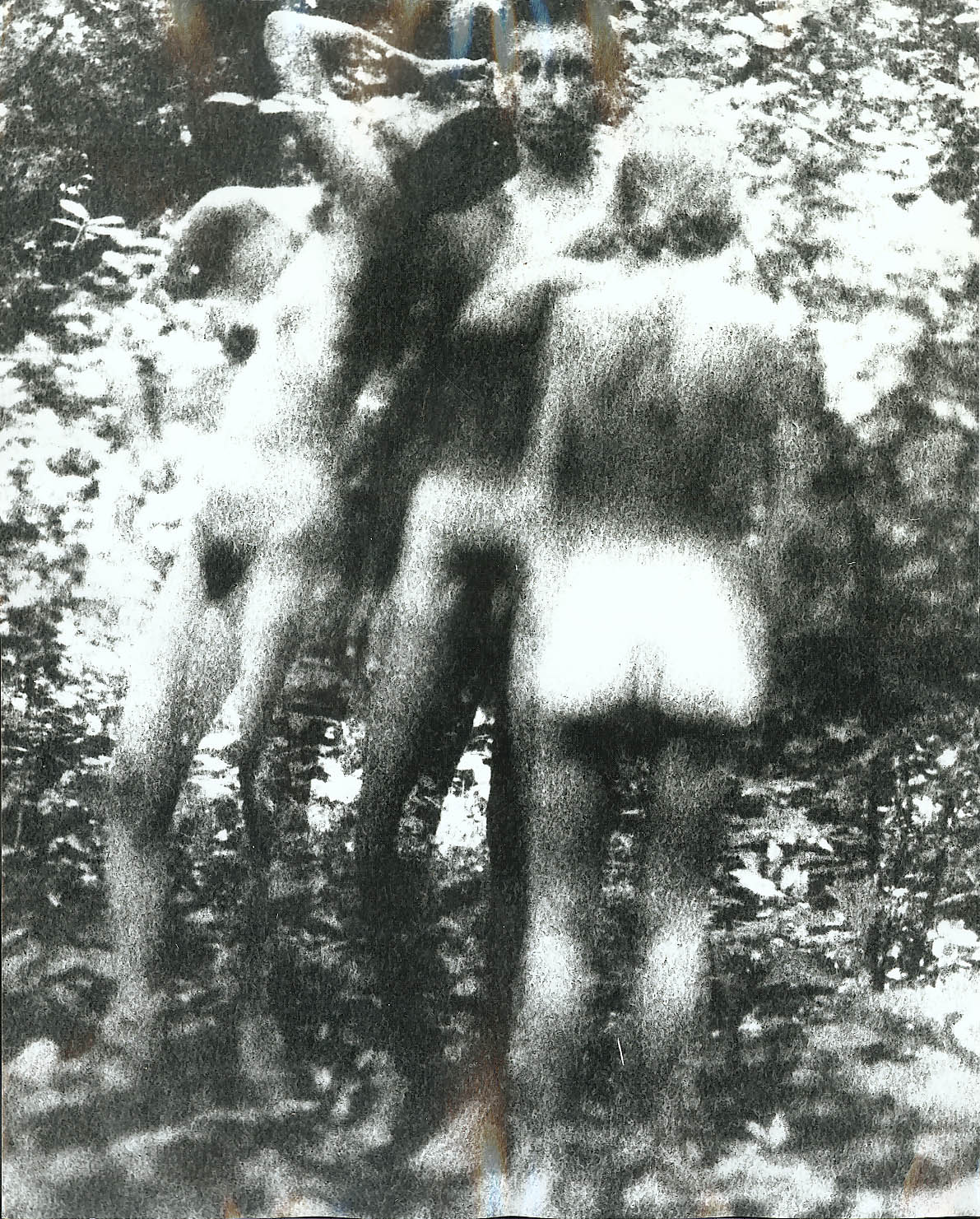3 nudes in woods 2 facing Gene Szafran photo 1960s