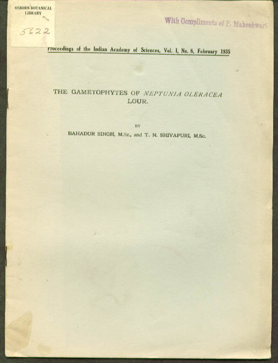 Gametophytes Neptunia Oleracea Lour paper 1935