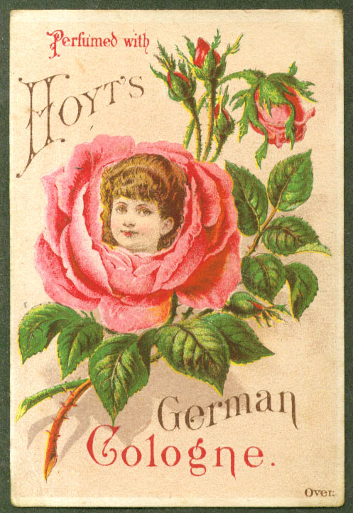 Image for Hoyt's German Cologne trade card girl in rose 1880s