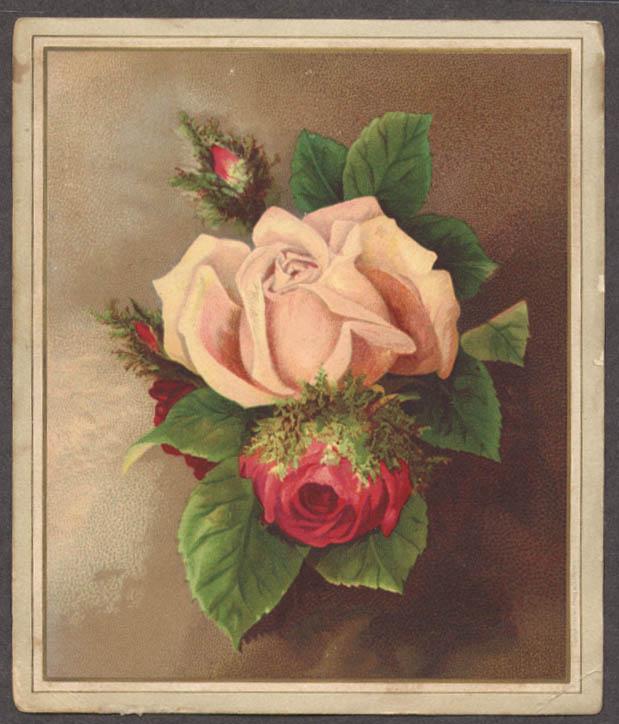 Image for Dorchester Mutual Fire Insurance Annual Report trade card 1886