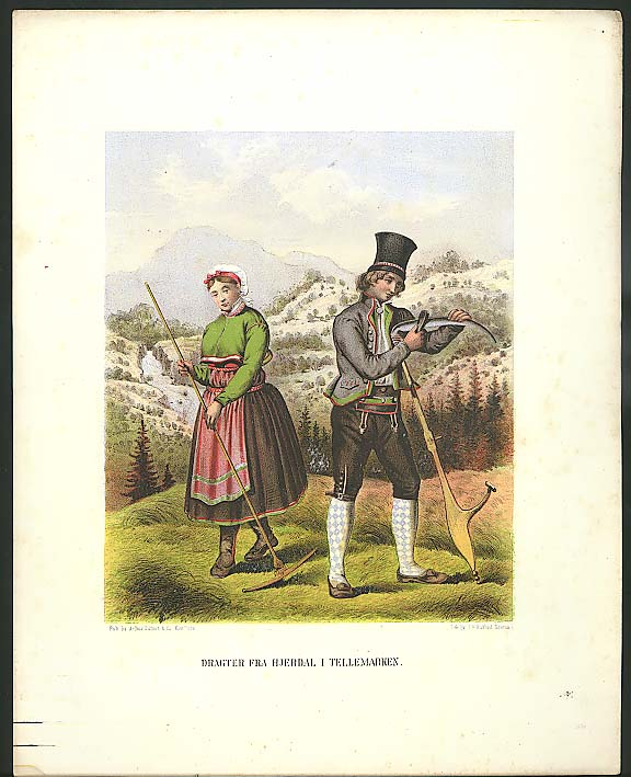 J H Bufford color lithograph Hjerdal Tellemarken 1851
