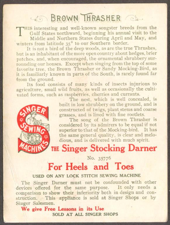 Image for Singer Sewing Machine American Singer Bird Series #13 Brown Thrasher 1900