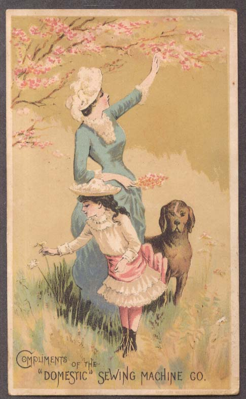 Image for Domestic Sewing Machine trade card mother daughter & dog in flowers 1880s