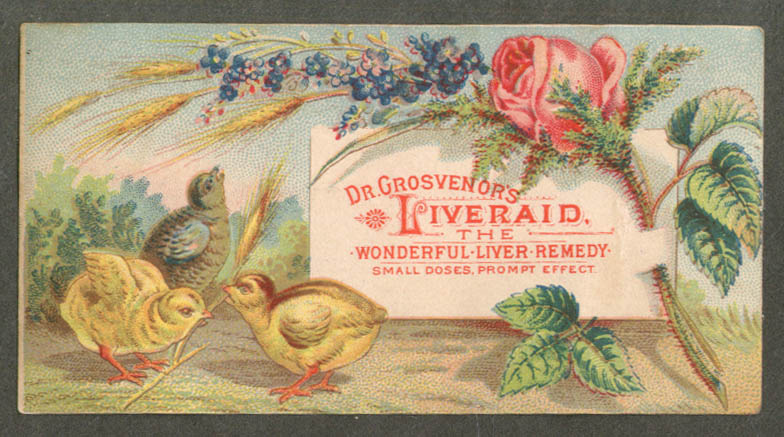Image for Dr Grosvenor's Liveraid Wonderful Liver Remedy trade card 1880s