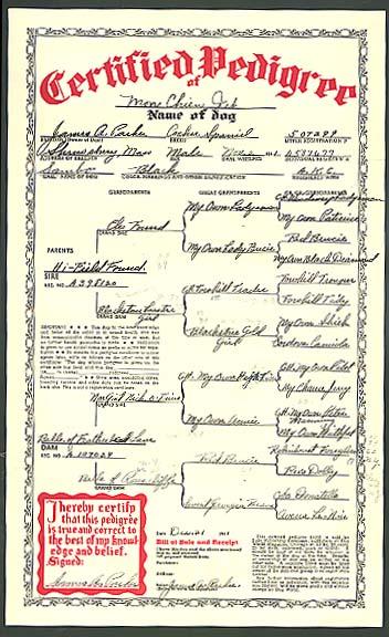Image for Cocker Spaniel Mon Chien Jet Certificate of Pedigree AKC A587677 1941