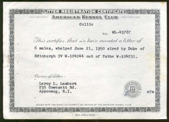 AKC Collie Litter Registration Duke of Edinburgh x Pathe Apponaug RI 1950