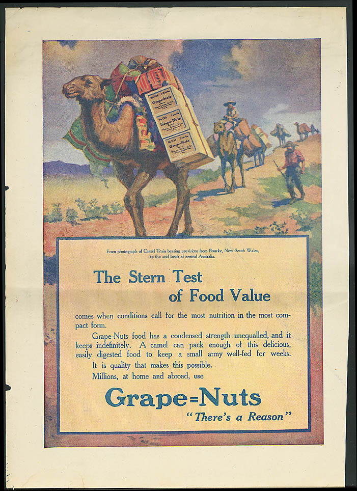Stern Test of Food Value Camel Train Bourke Australia Grape-Nuts ad ca 1910