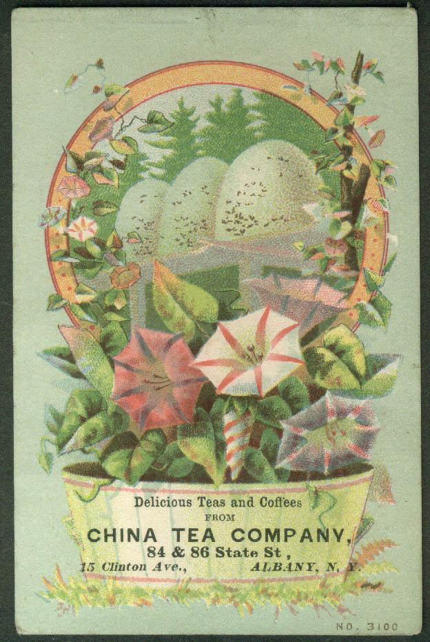 China Tea Company Albany NY trade card 1880s eggs pansies basket