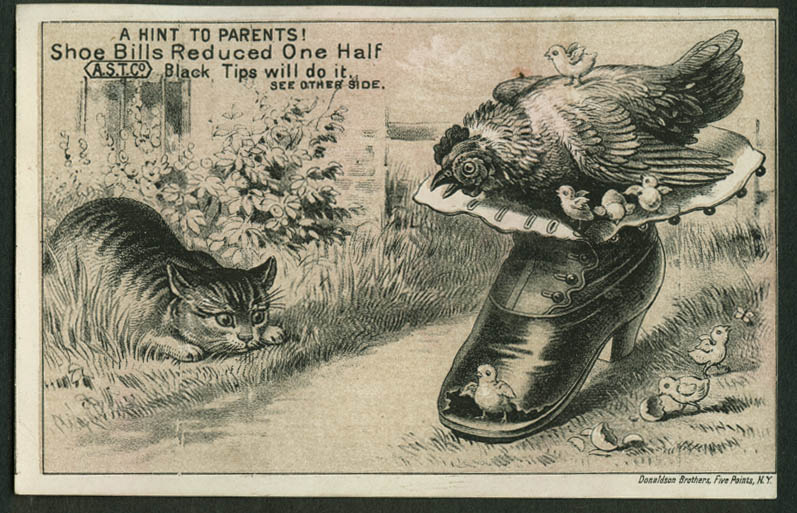 American Shoe Tip W W Cafferty Binghamton NY trade card 1880s cat v hen & chicks