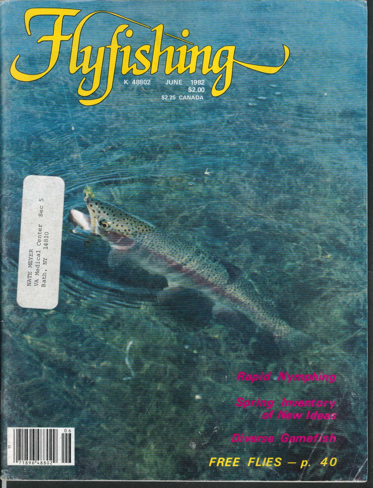 FLYFISHING Rapid Nymphing Gamefish Lochsa River 6 1982