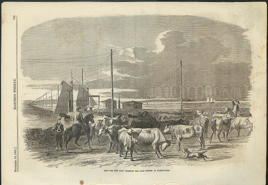 Image for Army Beef crossing Long Bridge at Washington DC Harper's Weekly page 1861