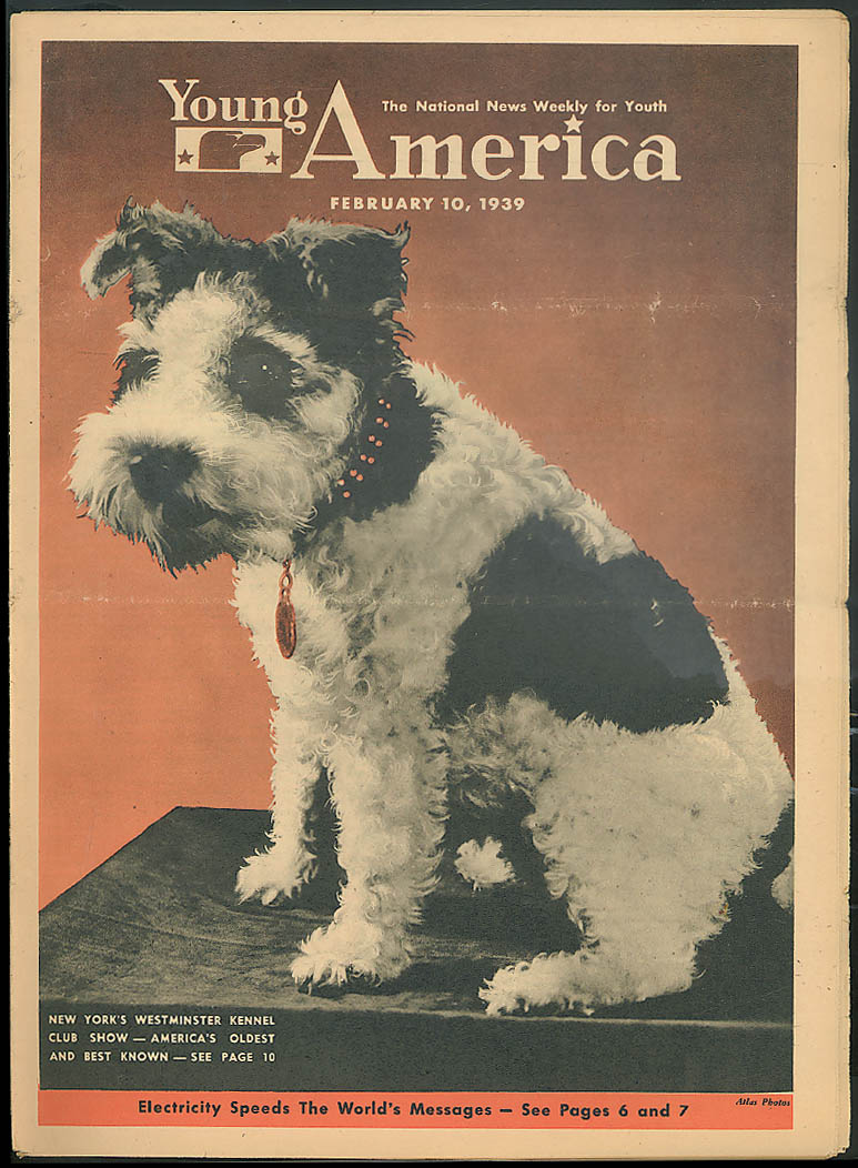 YOUNG AMERICA Westminster Dog Show Spain Rooney as Huck Finn 2/10 1939