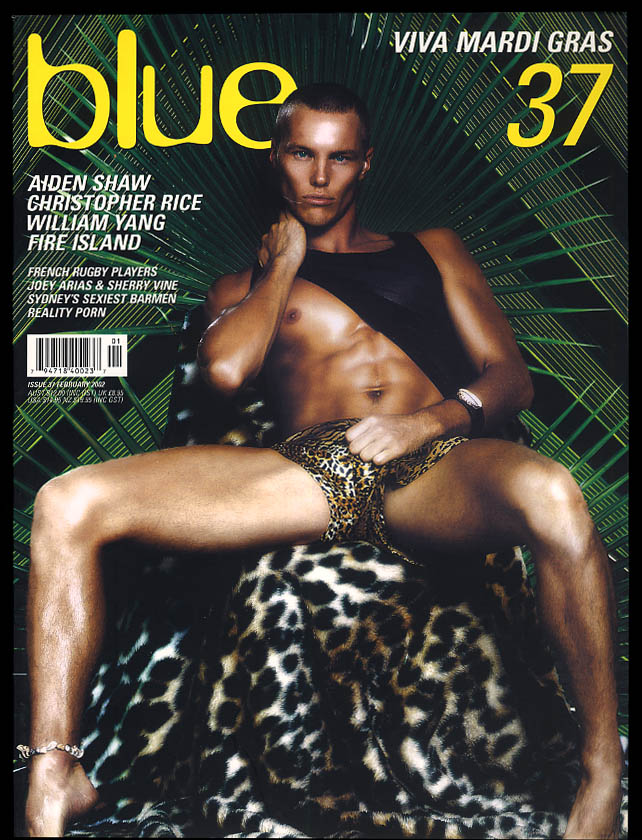 NOT ONLY BLUE Gay male erotica #37 2 2002 Aiden Shaw William Yang Fire Island