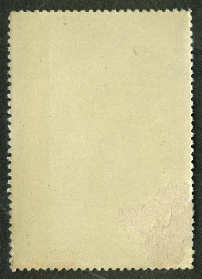 Battleship USS Illinois BB-7 cinderella stamp Enrique Miller 1910s