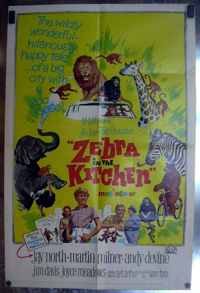 Image for Zebra in the Kitchen 1965 one-sheet movie poster Jay North