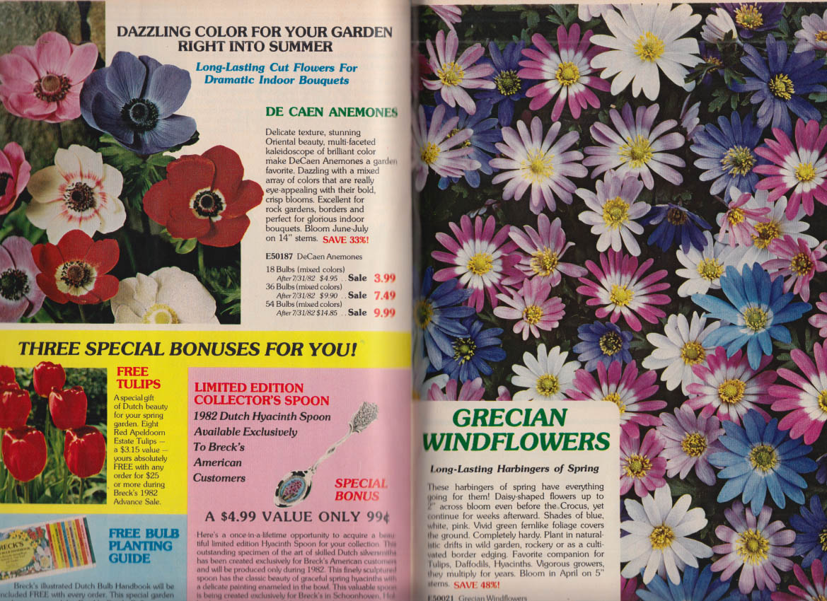 Breck's Flower Seed Catalog 1982 Advance Sale ends 7/31 1982