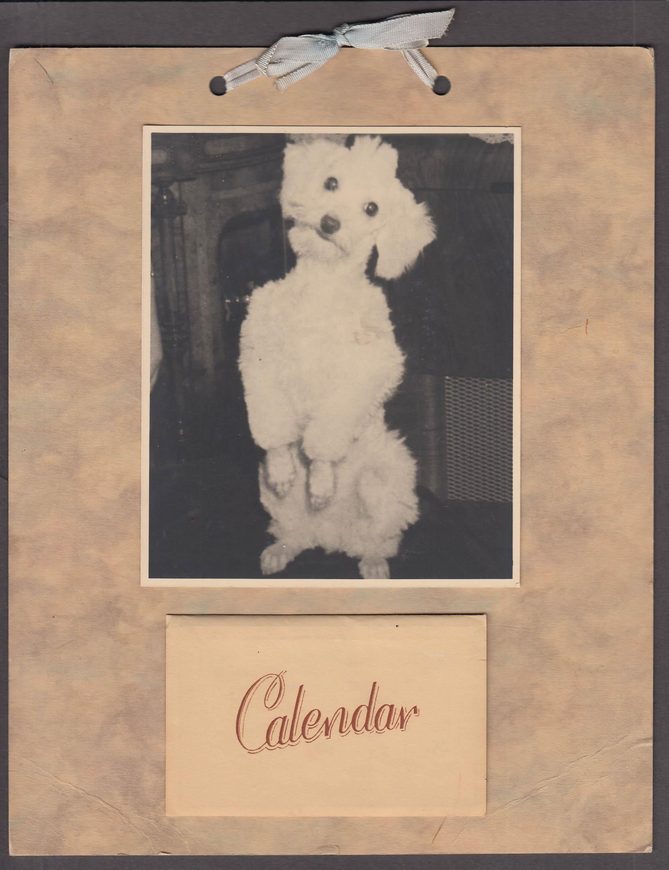 Ellie's Poodle Poppet personalized calendar 1956