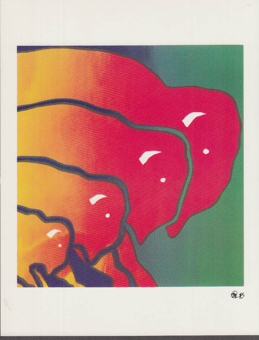 The Buffalo Series set of four prints by Michael Morgulis 1985