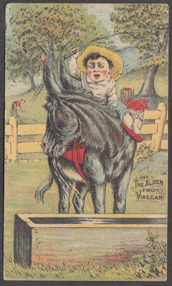 C W Field & Son Clothing Alden Fruit Vinegar trade card 1880s recalcitrant mule
