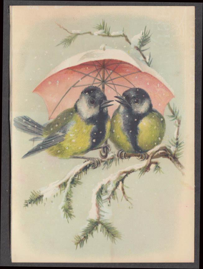 Street's Perfection Buckwheat Flour trade card 1880s 2 birds under umbrella
