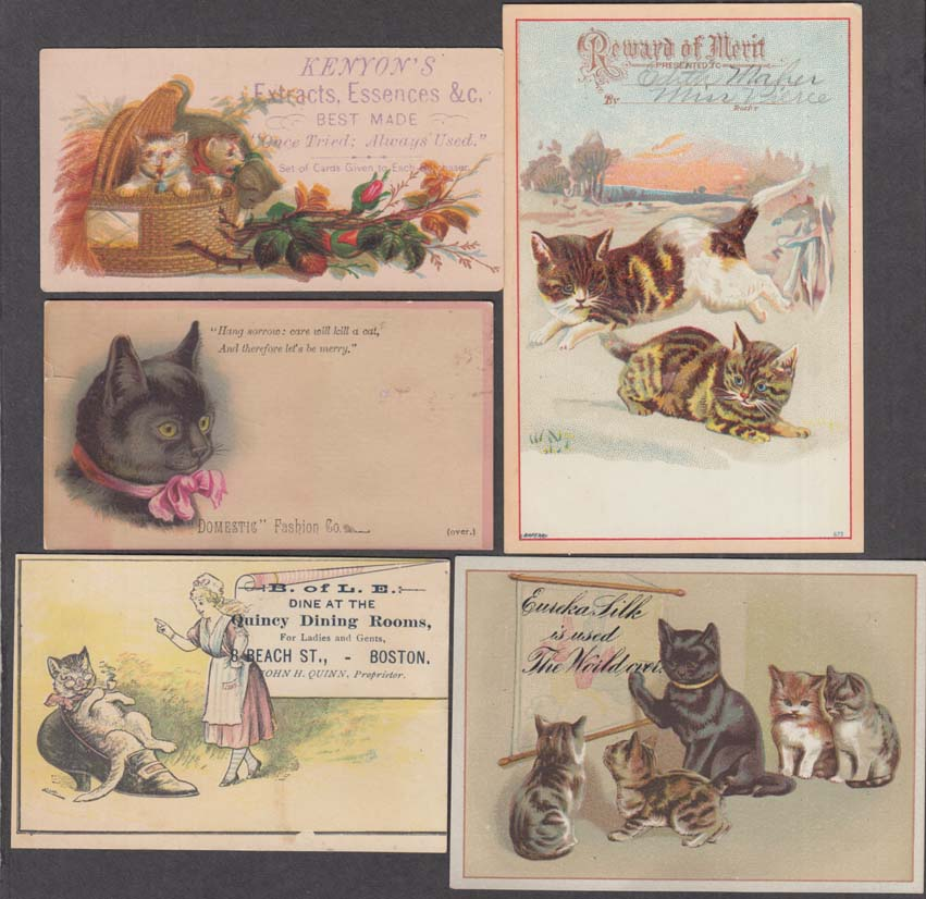 Image for Lot #2 of FIVE different cat kitty kitten pussycat trade cards 1880s