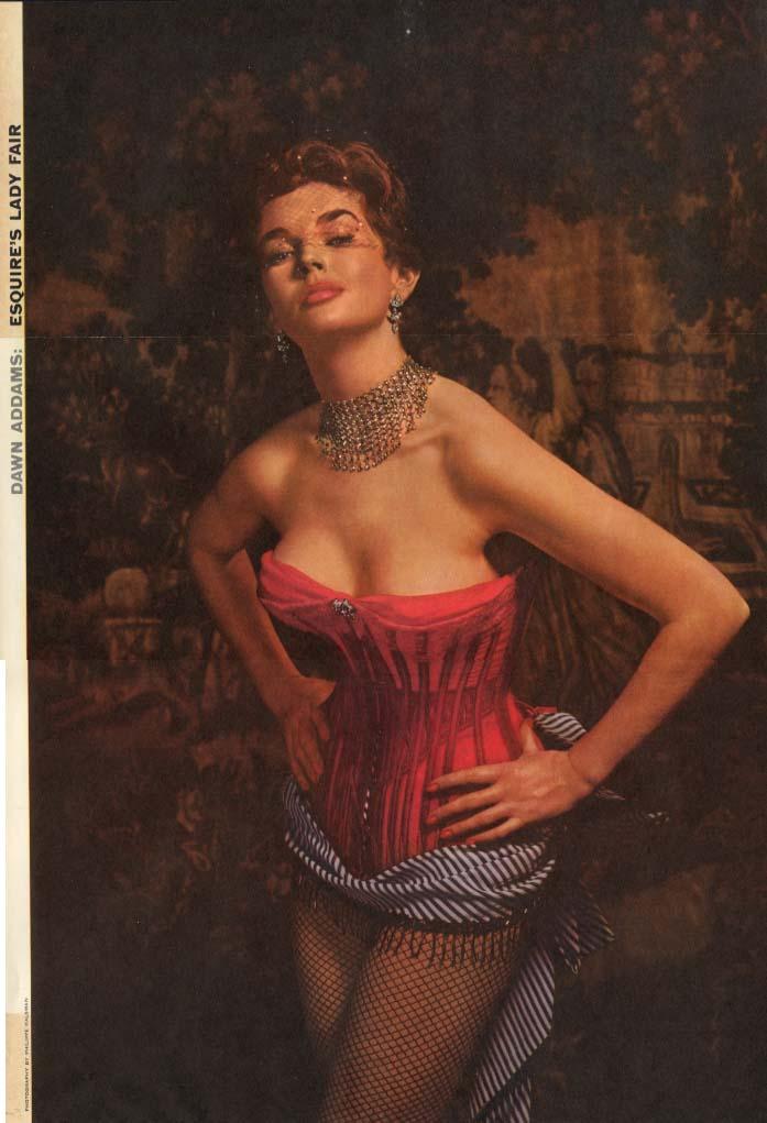 Esquire's Lady Fair Dawn Addams by Philippe Halsman Esquire foldout pin-up 1954