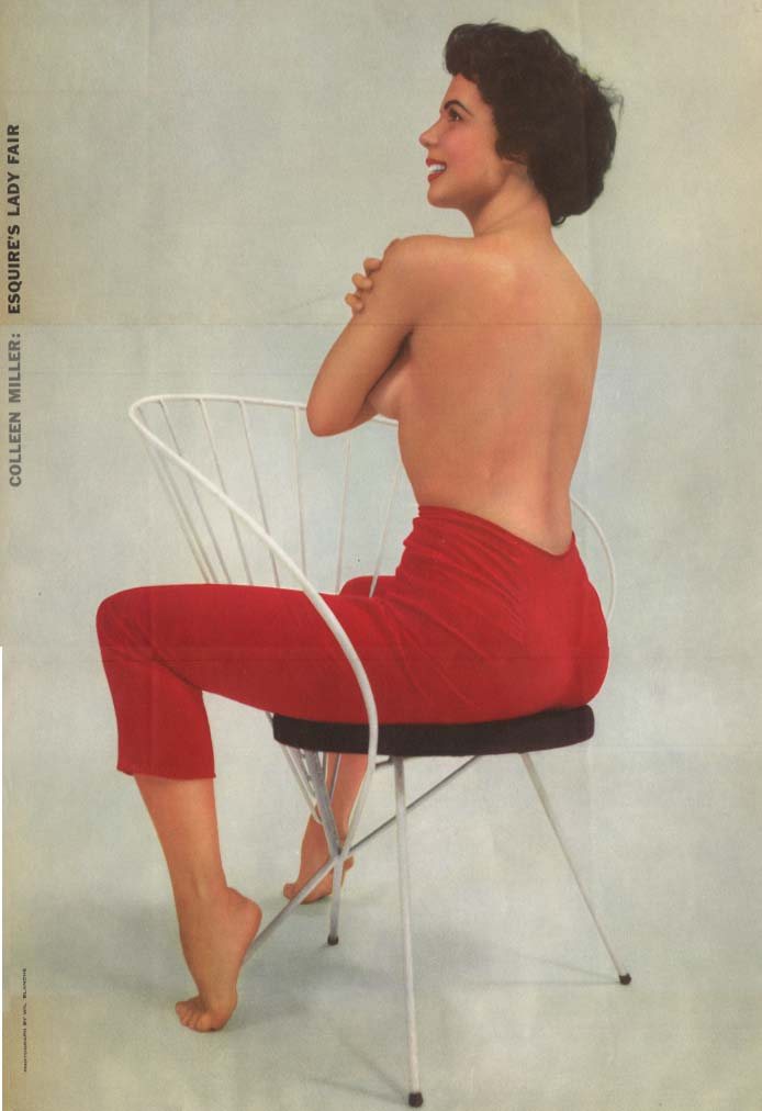 Esquire's Lady Fair Colleen Miller by Wil Blanche Esquire pin-up foldout 1956