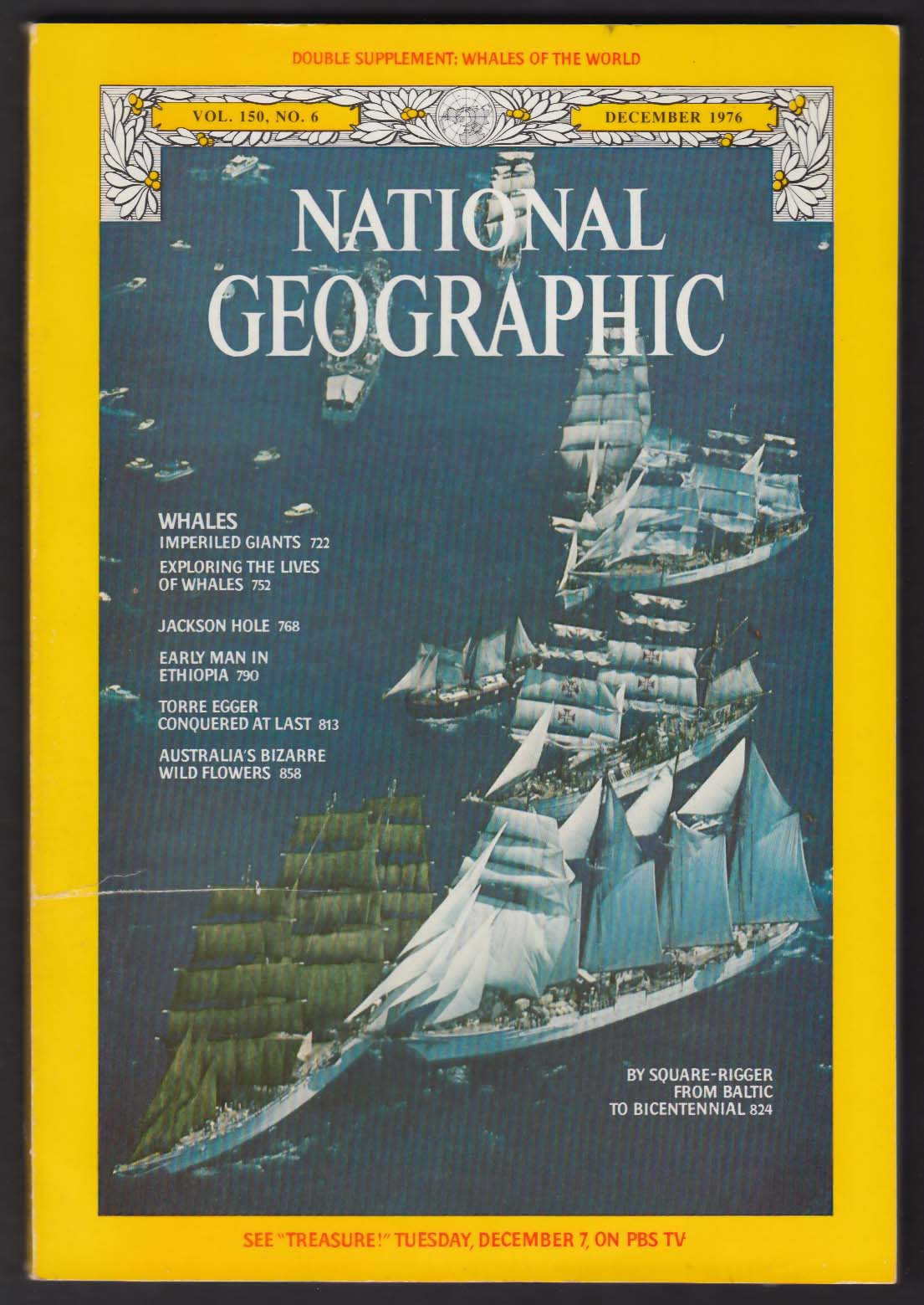 NATIONAL GEOGRAPHIC Square Rigger Dar Pomorza Baltic Bicentennial 12 1976