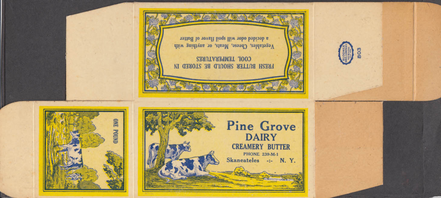 Pine Grove Dairy One Pound Butter container unused Skaneateles NY ca 1920s