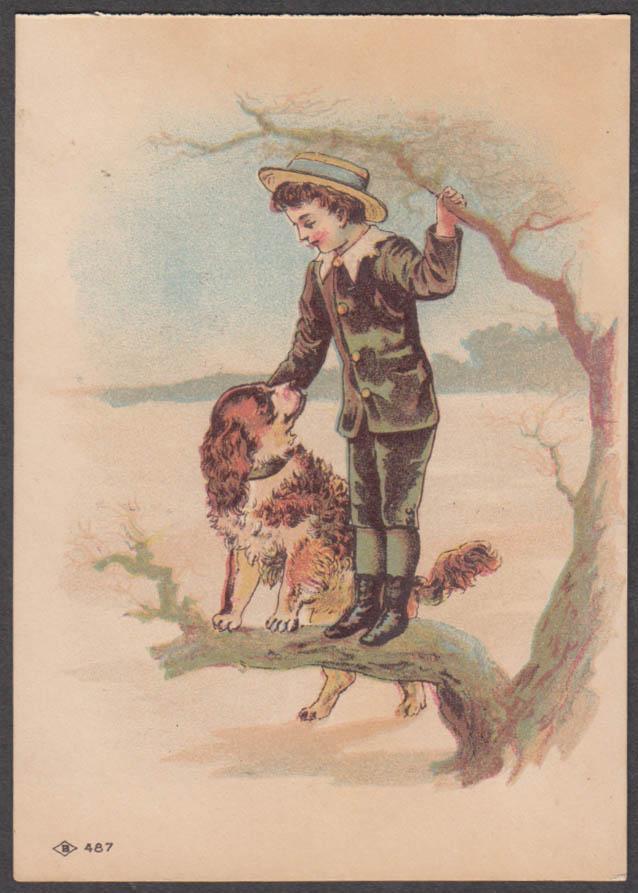 Boone Iowa District Fair trade & admission card 1893 boy & dog in tree