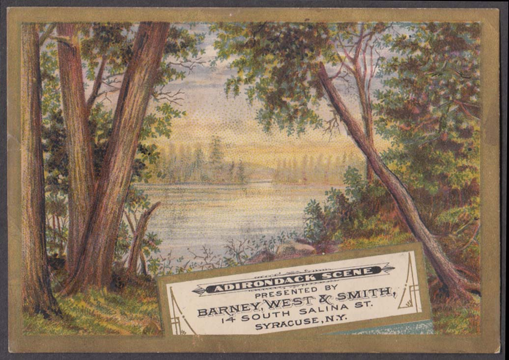 Barney West & Smith Dry Goods Millinery trade card 1880s Syracuse NY
