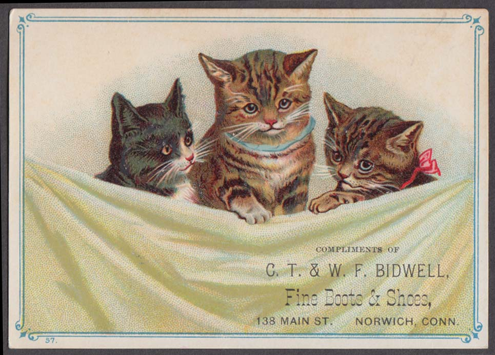 C T & W F Bidwell Fine Boots & Shoes trade card Norwich CT 1880s 3 cats